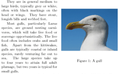 LSI关键词:善用潜在语义词提高相关性