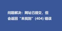 """问题解决:网址已提交,但会返回""""未找到""""(404) 错误"""